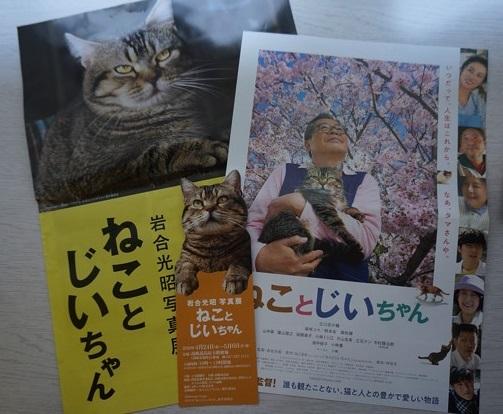 可愛い猫型チケット