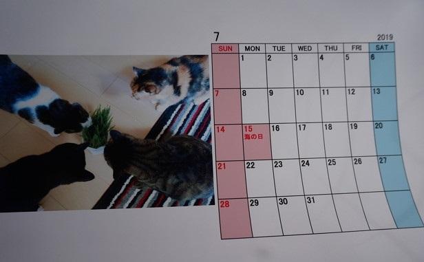 2019.7のカレンダー