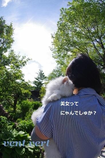 出雲大社4