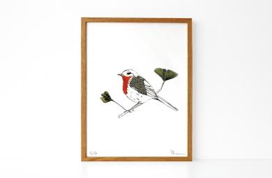 bird_b_1[1]