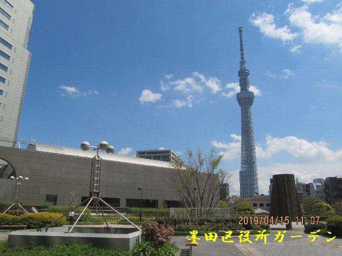 20190415浅草ー176