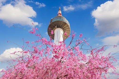「GW日本人旅行先1位は韓国」事前報道→現実「韓国に日本人観光客がいない。何かが間違っている」