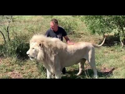 【スゴイ!】怖い動物が可愛く見えた・・・