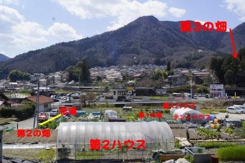 2-_DSC0595.jpg