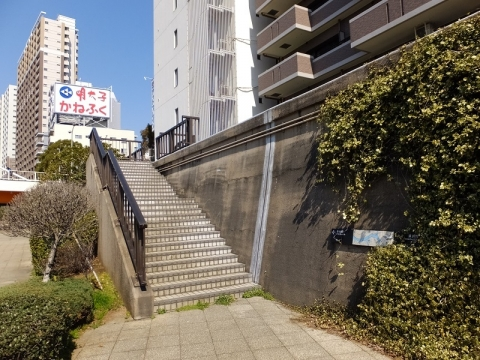 隅田川新大橋たもとの防潮堤・テラス護岸