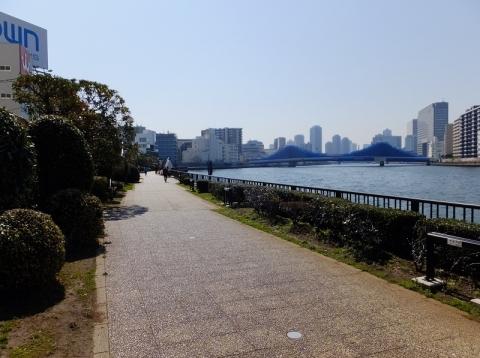隅田川左岸のテラス護岸・新大橋下流