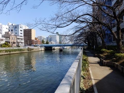 新小名木川水門東側の小名木川