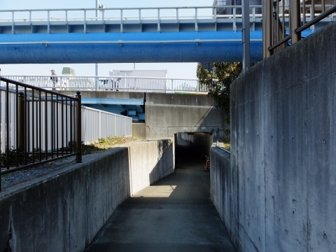 小名木川、高橋・水辺の散歩道