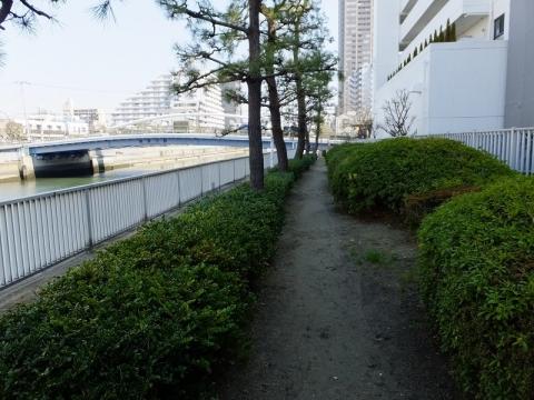 小名木川、水辺の散歩道・東深川橋付近