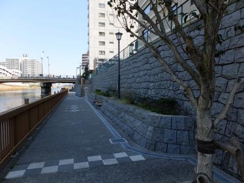 小名木川橋付近の水辺の散歩道