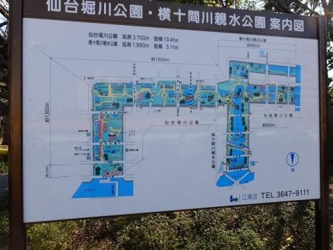 仙台堀川・横十間公園案内板