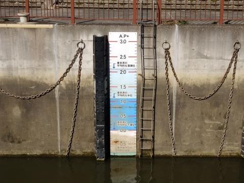 荒川ロックゲート・水位目盛