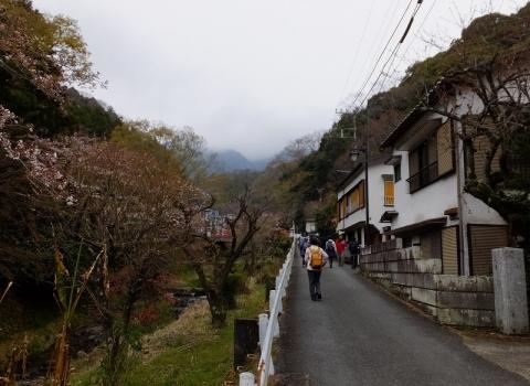 鈴川沿いの旧大山道