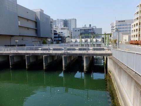 仙台堀川と清澄排水機場