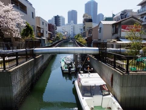 大島川西支線・福島橋下流