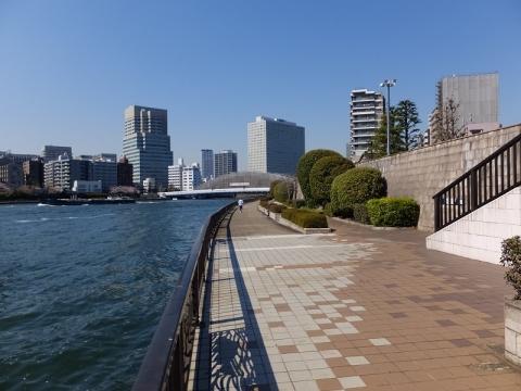 隅田川のテラス護岸