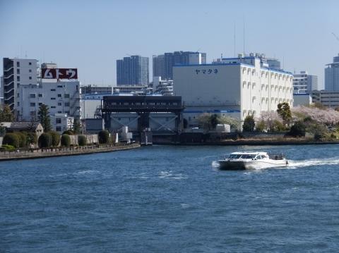 隅田川右岸より大島川水門を望む