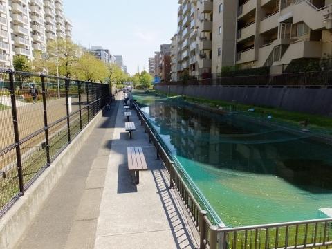 大横川親水公園・釣り堀
