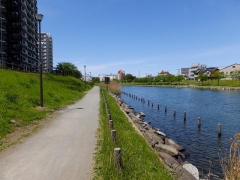 旧中川散策路