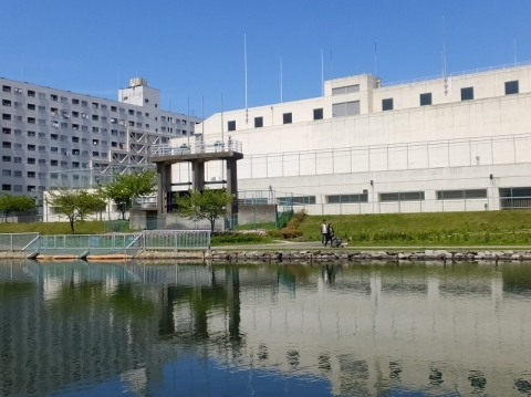 旧中川・小松川ポンプ所雨水下水吐口