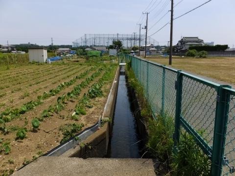 三田用水幹線用水路・厚木市三田