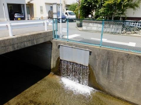 干無川に合流する三田用水