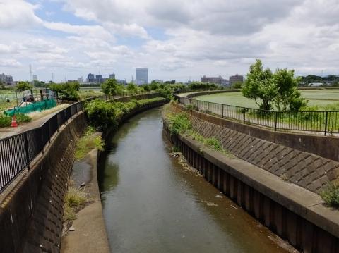 見取橋より鳩川下流を望む