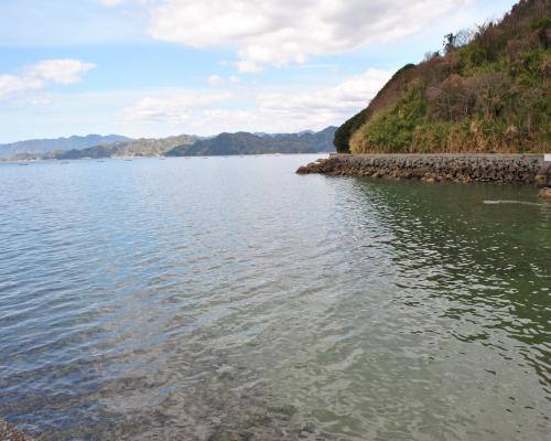 九島西海岸