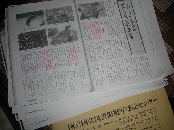DSCN47181.jpg