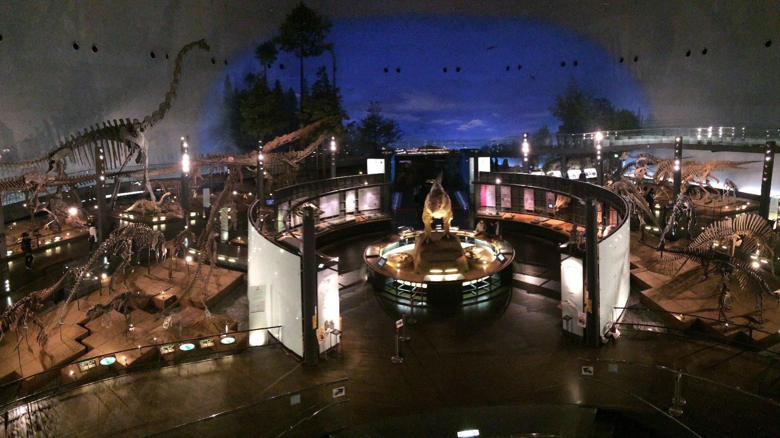 恐竜博物館 展示室
