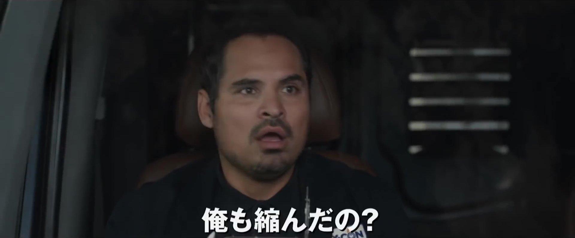 『アントマン&ワスプ』予告編より 相棒