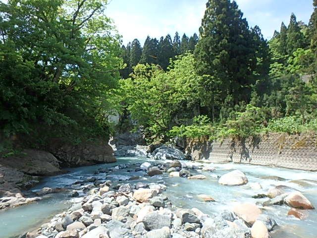 唯一の小滝川8