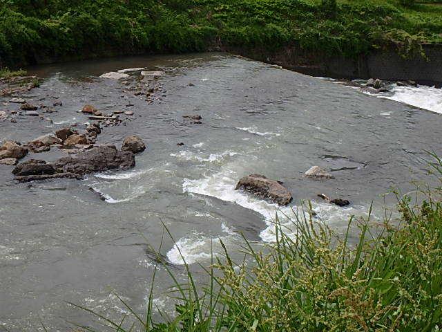 唯一の小滝川18