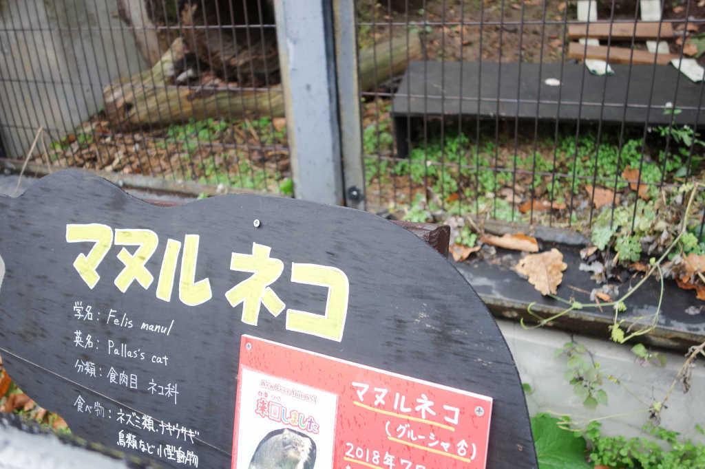 旭山動物園19