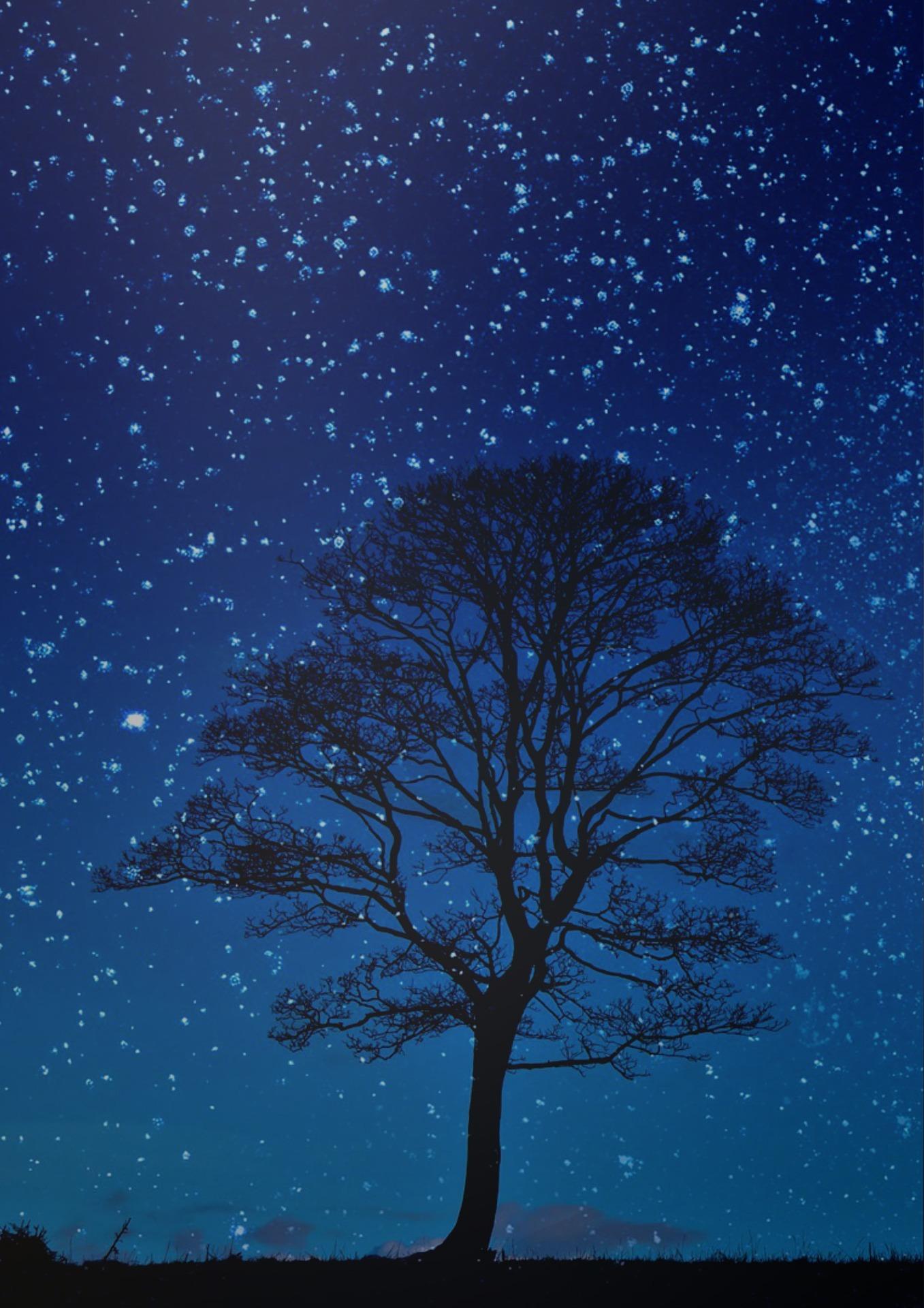 night-1808524_1920.jpg