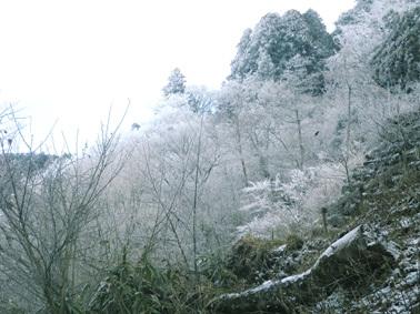 金剛山02