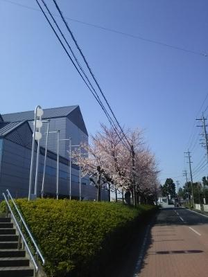 2019-04-04 (300x400)