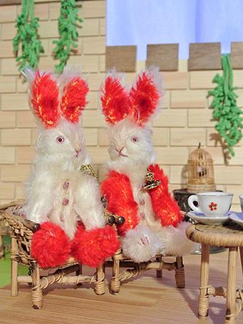 双子のうさぎたち、(左)兄レティムちゃん、(右)弟レティスちゃん