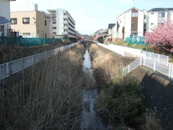 平戸永谷川桜川岸03