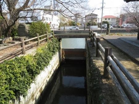 水落川下り 2019-02-21 008