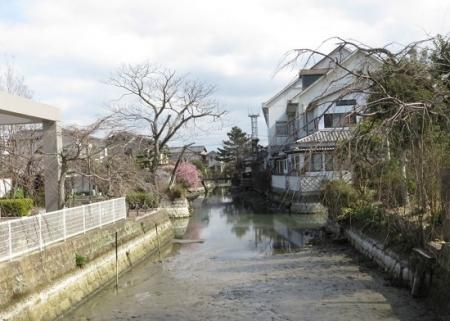 柳川水落とし 2019-02-20 005