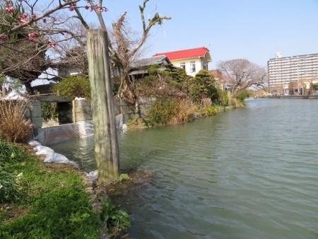 水落川下り 2019-02-21 014