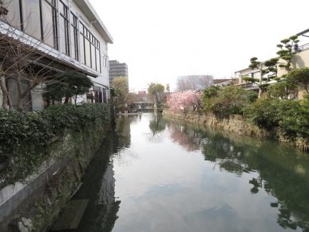 再開川下り 2019-03-01 065