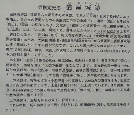 光明寺のしだれ桜 2019-03-29 098