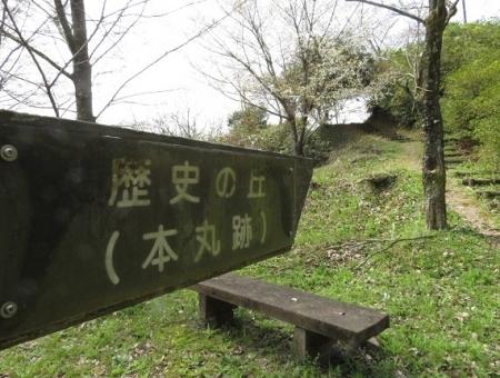 光明寺のしだれ桜 2019-03-29 122