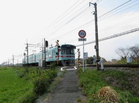 蕾ソメイヨシノ桜 2019-03-21 012