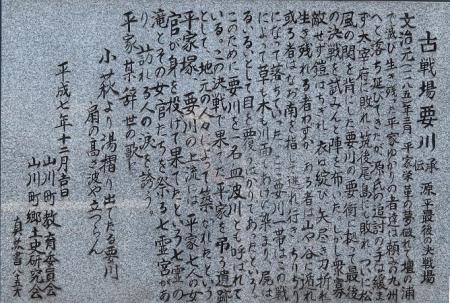 一本桜 2019-04-02 165