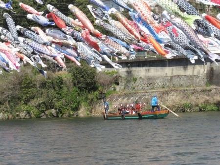 川上峡鯉幟 2019-03-23 118