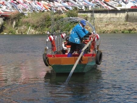 川上峡鯉幟 2019-03-23 113