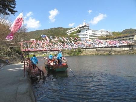 川上峡鯉幟 2019-03-23 111